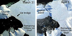 Ice bridge connecting Charcot Island and Latady Island