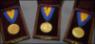 GSA Gold Medals