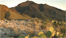 Franklin Mountains, Texas
