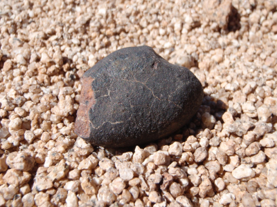 Meteorite with thin, dark, fusion crust