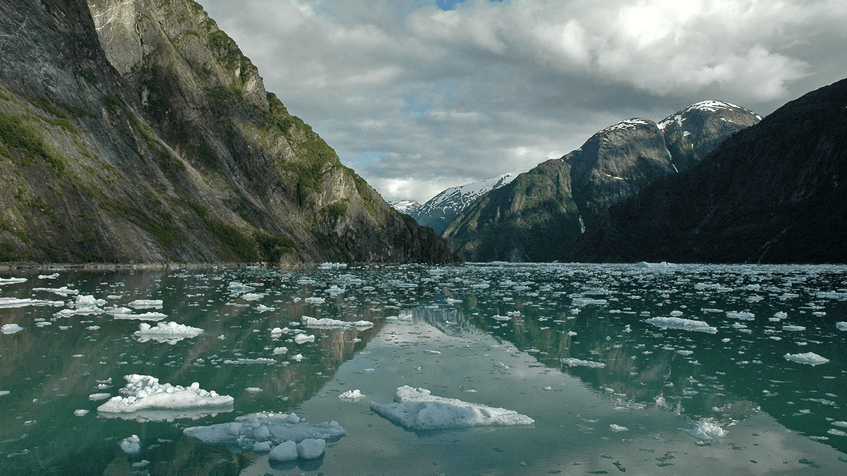 Tracy Arm with floating ice; credit: Peter Mulligan