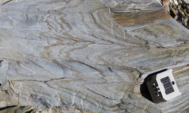 Folded blueschist with a Brunton geological compass for scale.